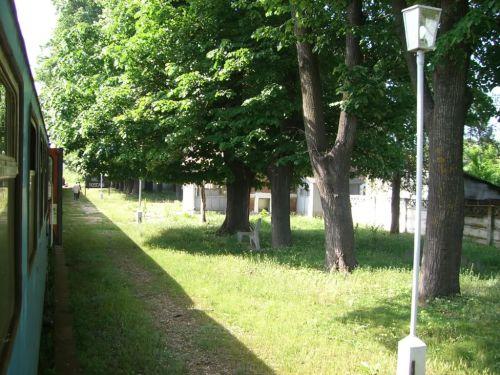 Orașul Berești